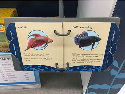 All About Betta Guide Literature Holder 3