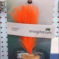 Carded Aquarium Plant Sales by Hook 2