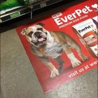 EverPet Dog Food Floor Graphic 3