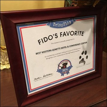 Fidos Favorite V.I.P. Best Western Hotel Feature