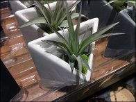 Life Magnetic Mated Plant Tray 2