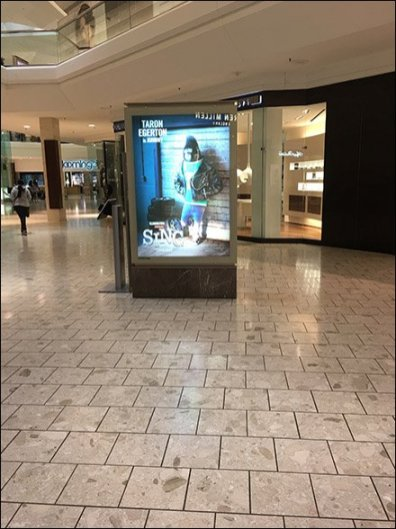 Monkey Business At The Short Hills Mall
