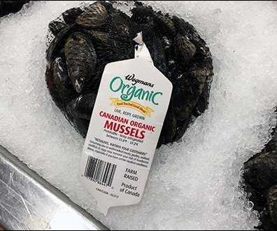 Hand Lettered Shingle Organic Canadian Mussels Iced 3
