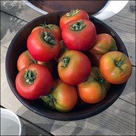 Macys Tablesetting Fresh Tomato Props Feature