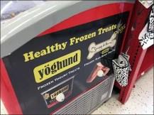 Yoghund Cooler For Frozen Dog Treats