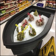 Iced Rowboat Mussels Feature