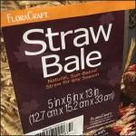Fall Hay Bale Merchandising Vs Straw Bale