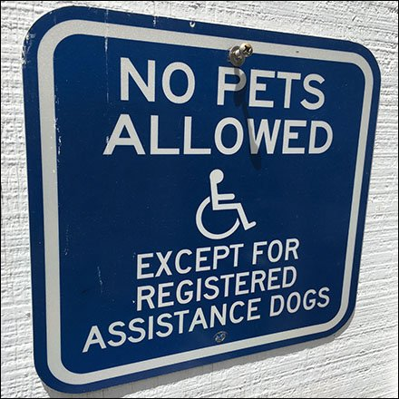 No Pets, Registered Assistance Dogs Only