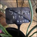 Scapes For Sale Sign At The Farm Store
