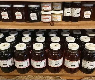Beekeepers Daughter Raw Honey Bulk Pack