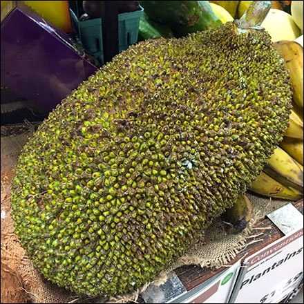 Conventional vs Organic Jackfruit Produce Feature