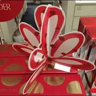 Estee Lauder Dimensional Cardboard Bow 1
