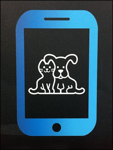 Petco Retail Fixtures - Pet Tech Center For Geeky Pet Owners