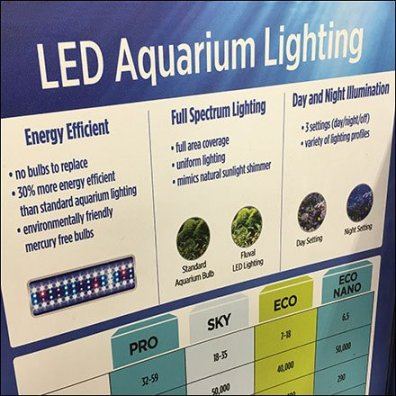 Color-Coded Aquarium LED Lighting Sale