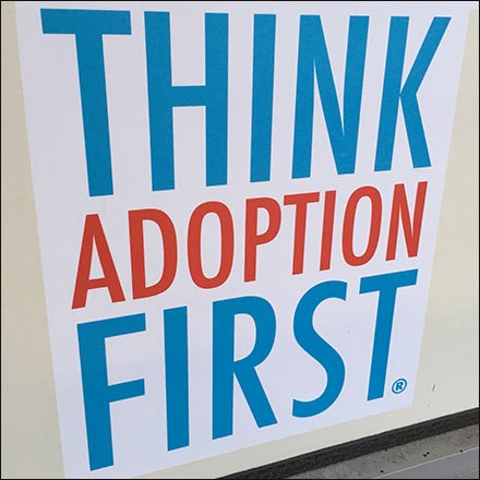 Think Adoption First Urges Petco Feature