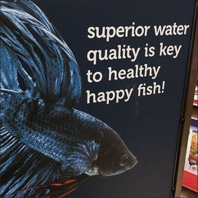Key To Happy Fish In-Store Advice Sign Feature