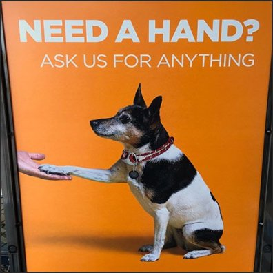Pet-Friendly Need A Hand Store Entry Sign