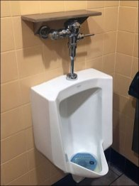 Restroom Urinal Shelf for iPhone and iPad