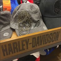 Harley-Davidson Branded Cart Outfitting