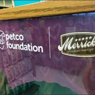Petco Foundation Literature Holder by Merrick