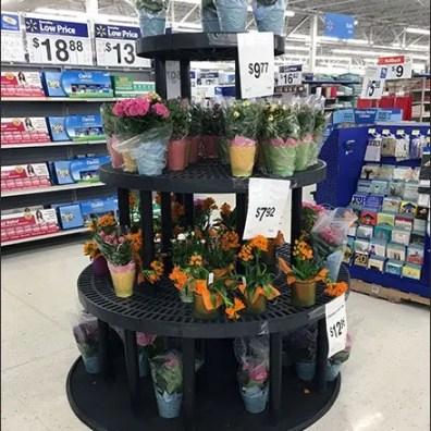 Circular Dunnage Rack Floral Display