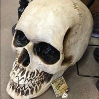 Giant Haunted Living Halloween Skull