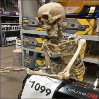 Pre-Season Skeleton Snowblower Sale