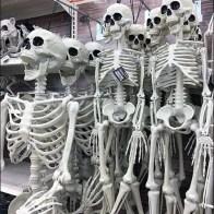 Halloween Skeleton Selection Pegboard Hooked