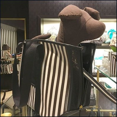 Henri Bendel Purse As Pet Carry