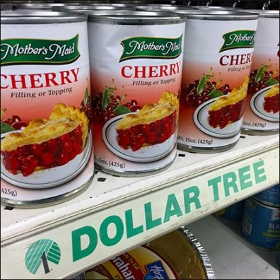 Dollar Tree Shelf Edge C-Channel Branding Feature