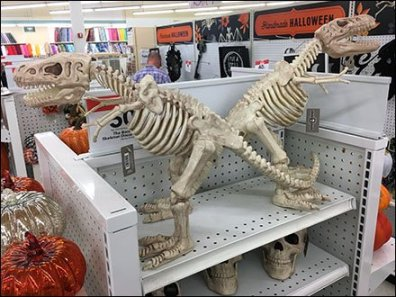 Tyrannosaurus Twins Celebrate Halloween Display