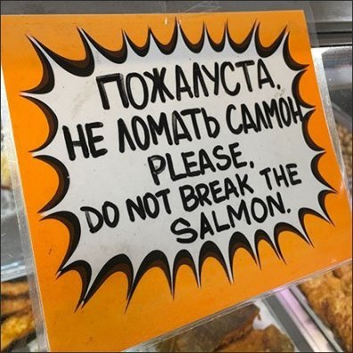 Do Not Break The Salmon Gourmet Russian Entreaty
