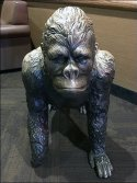 Gorilla Bench Seating in Hospitality Retail