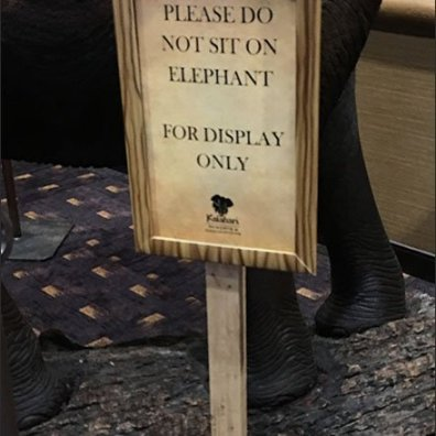 Please Don't Sit On The Elephant