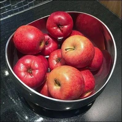 Tonal Range Ripe Apple Showroom Props