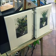 Garden Center Artist Easel Presentation In-Store