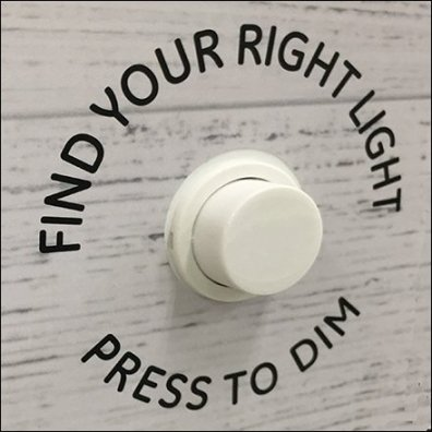 Vintage Lightbulb Replacement Try-Me Controls