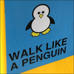 Walk-Like-a-Penguin Icy Condition Warning