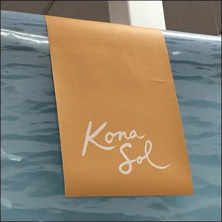 Kona-Sol BBW Bathing Suit Mannequin