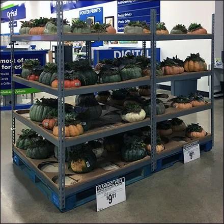 Assorted Pumpkin Rack Merchandising