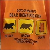 Poconos Bear Identification Guidelines