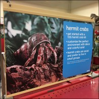 Hermit-Crab Gondola Median Sign