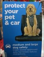 Pet Seatbelt-Sizing Instructions Sign