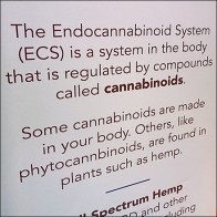 CBD-Hemp ECS System Merchandising Message
