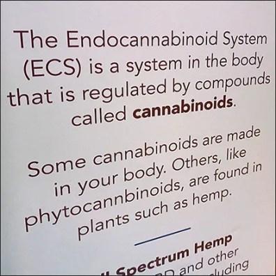 CBD-Hemp ECS System Merchandising Message