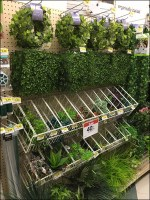 Gravity-Feed Greenery Endless Basket