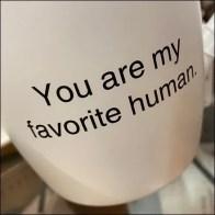 Wegman's Seasonals Slatwall Favorite-Human Mug Display Hook Feature
