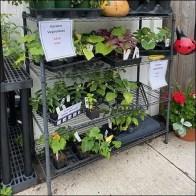 Super-Erecta-Shelf Outdoor Floral Display