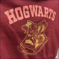 H&M Harry-Potter Hogwarts Hoodie Faceout