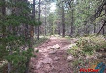 Cuchara Recreation Area - Indian Creek Trail Photo Gallery